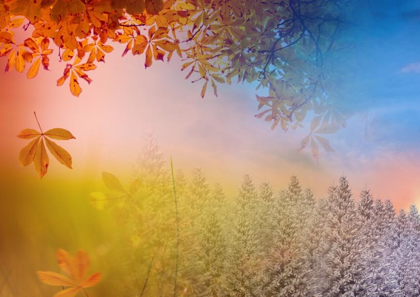 Digital composition of autumn and winter season